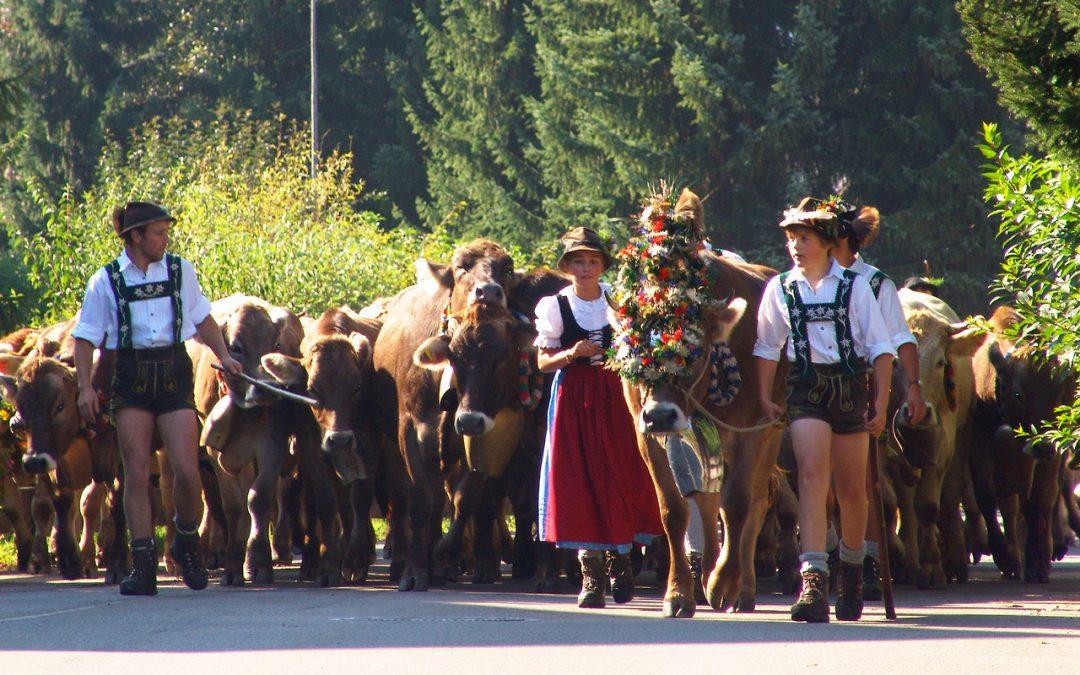 Viehscheid Oberstdorf