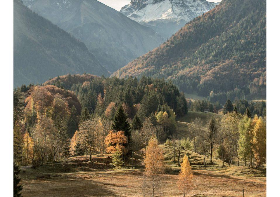 Oberstdorfer Naturgenuss